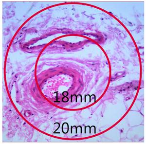 N-350M生物显微镜