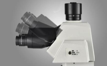 金相正置显微镜
