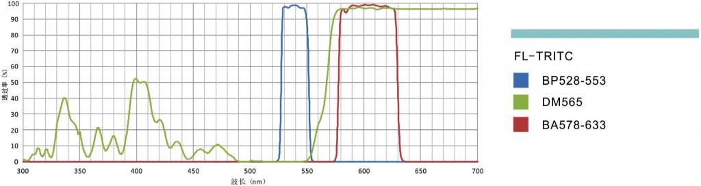 荧光滤光镜组